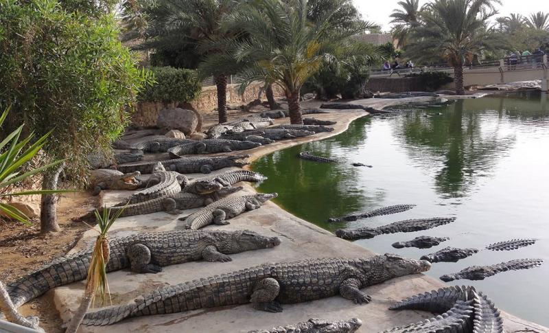 Джерба Djerba Explore Park
