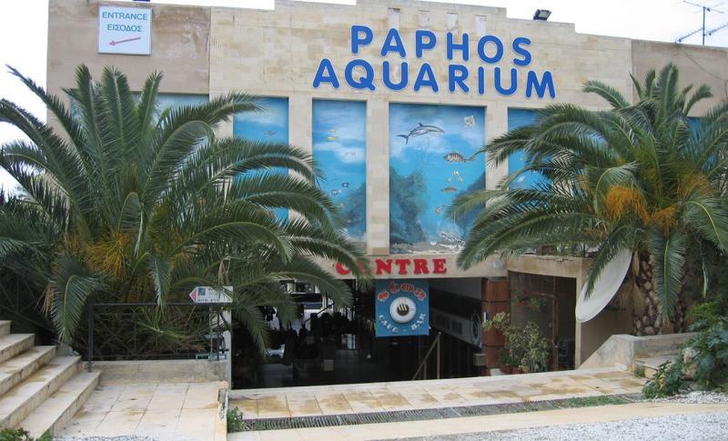 Пафос, аквариум, дети