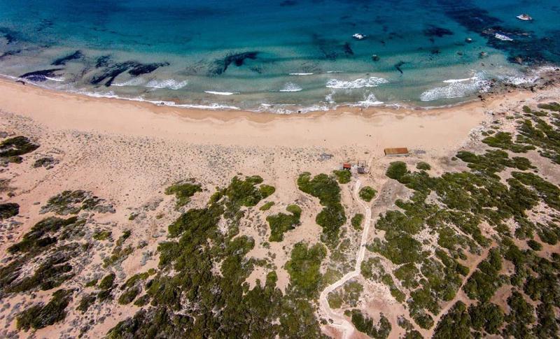 Кипр в мае - Пафос, Заповеднике «Акамас»