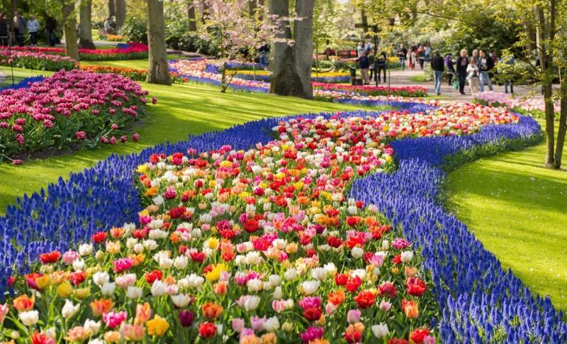 Амстердам, Посмотрите на Кекенхоф