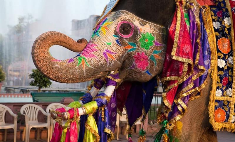 Индия, Яркая и колоритная