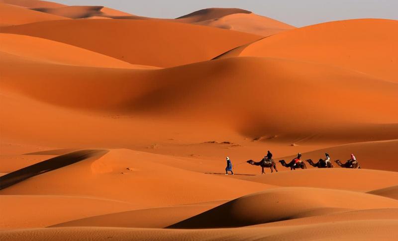 Чем заняться в Тунисе в мае, Поход в пустыню
