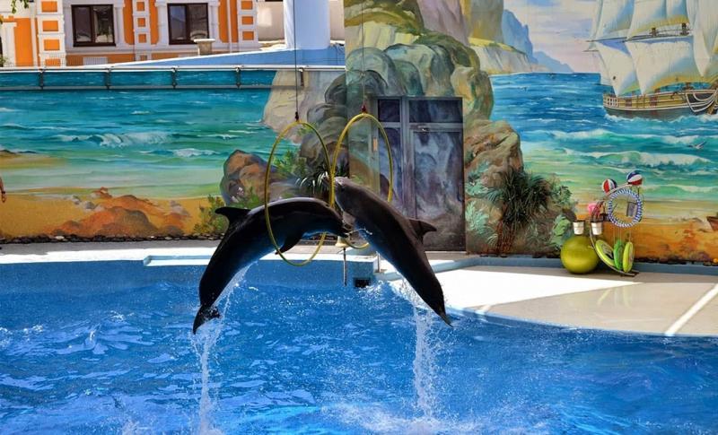 Что посмотреть, Дельфинарий в парке Ривьера