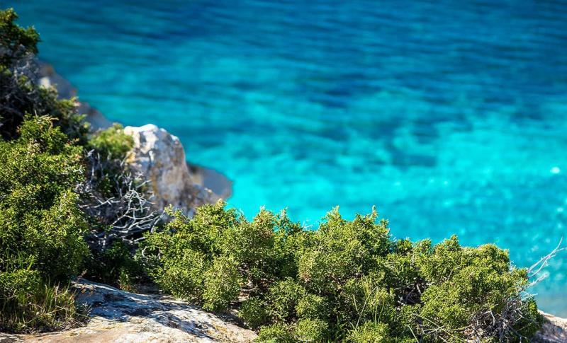 Кипр Айя-напа Парк Каво Греко